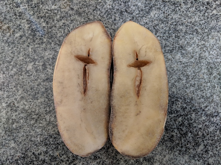 It's a sign - or a potato